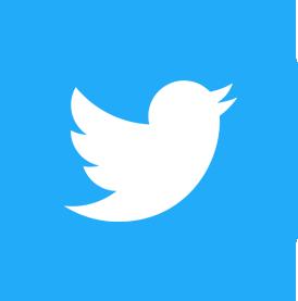 link al profilo twitter