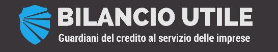 BILANCIO UTILE